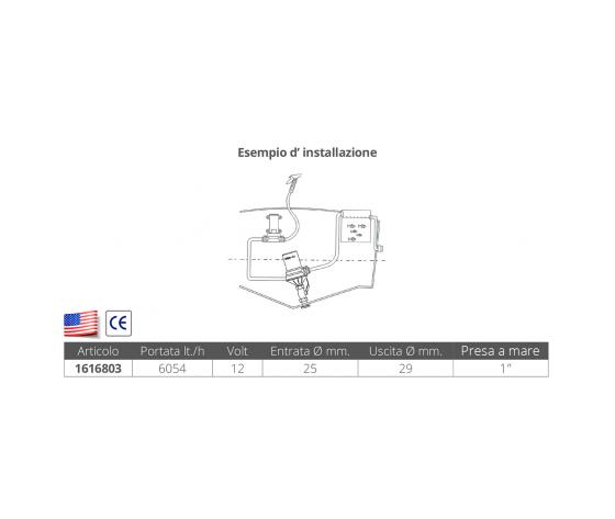 Pompa centrifuga dual port %281%29