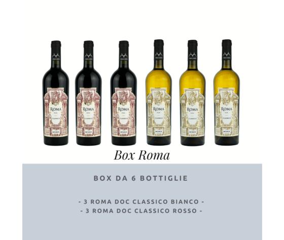 11.box roma