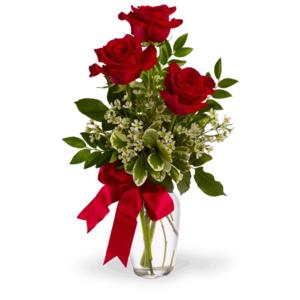 Rose rosse lunghe confezionate 3 pz