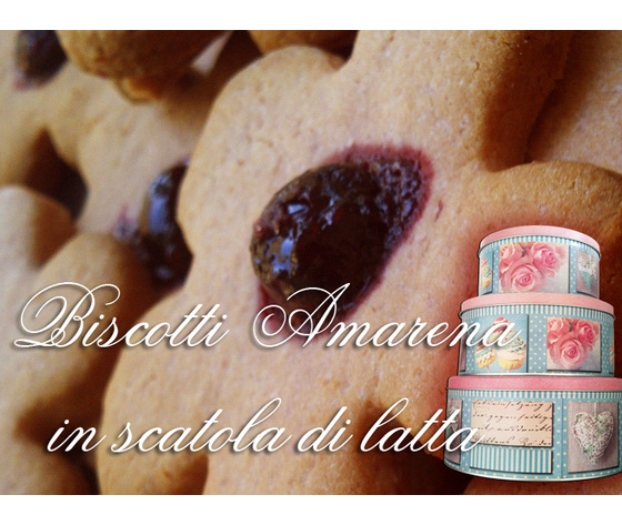 BISCOTTI ALL'AMARENA  gr. 500 in scatola di latta media