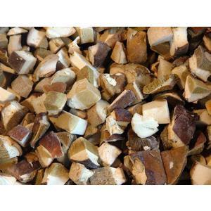Funghi porcini GELO CUBO 10 KG