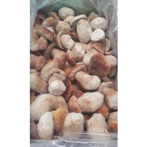 Funghi porcini congelati EDULIS 10 KG