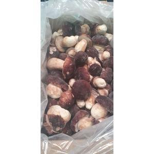 Funghi porcini congelati PINICOLA 10 KG