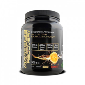 ANABOLIC RECOVERY - 500 GR