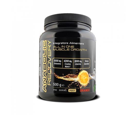 Net anabolic recovery 500 grammi