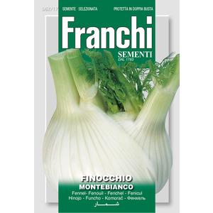 Finocchio Montebianco