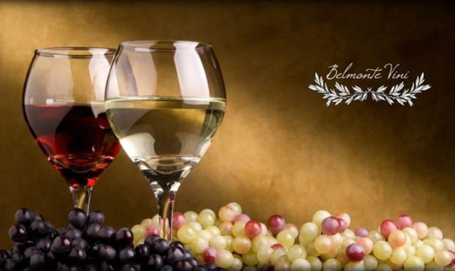 0wo5p000002qq4ggaq commercializzazione vini sud italia