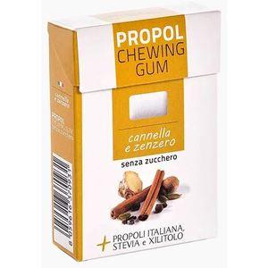 CHEWING GUM CANNELLA E ZENZERO