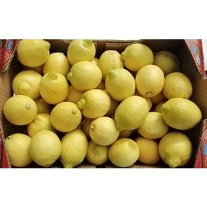 Limoni al kg