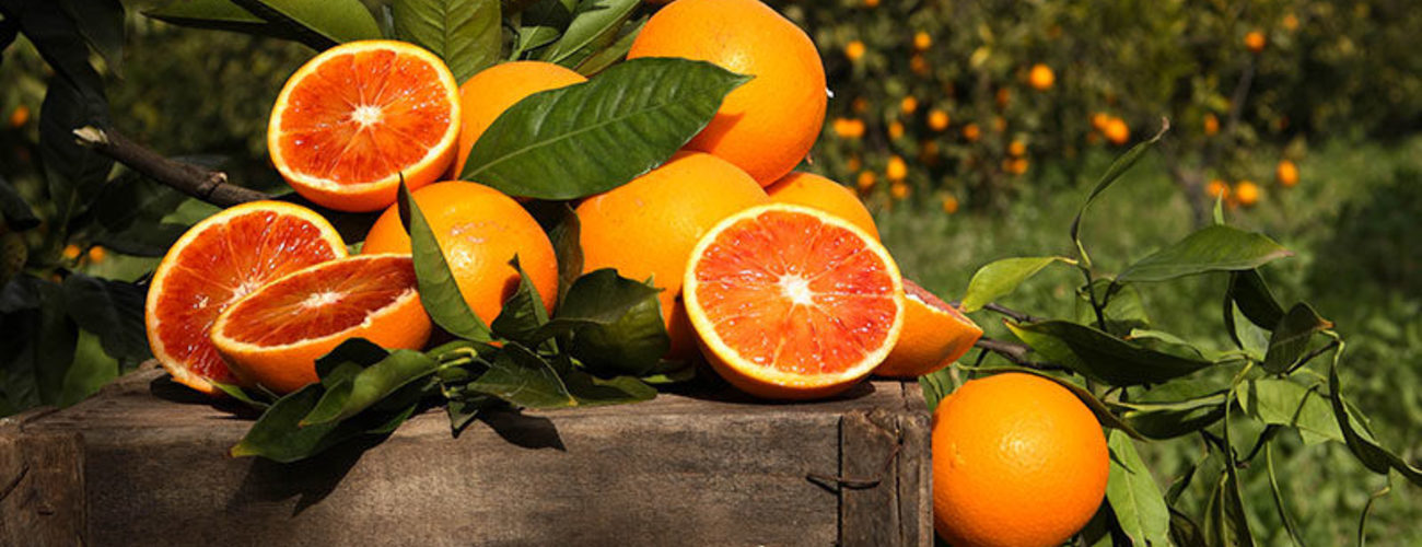 Arance tarocco sicilia  spremuta kg. 19 800x800