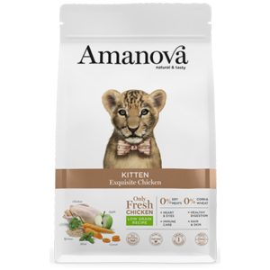 AMANOVA GATTO KITTEN EXQUISITE POLLO FRESCO