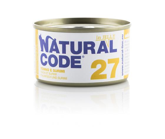 Code 27