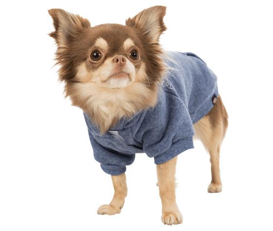 241306 pho pro dog clip 67480 67489 3