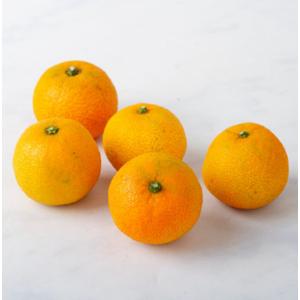 Clementine da agricoltura biologica (1000 g)