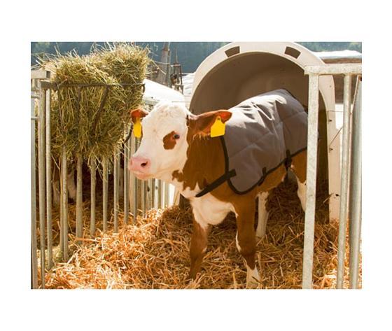 Coperta ripstopp termica per vitelli %281%29