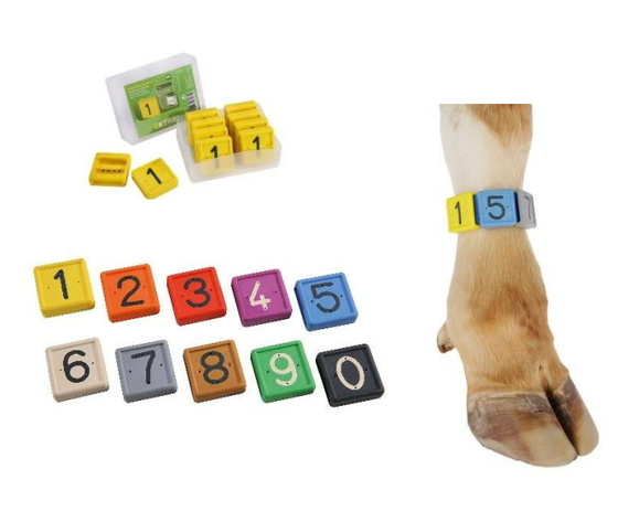 Numero per fascia da caviglia %2810pz%29