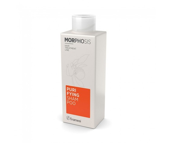 Framesi purifying shampoo 250 1
