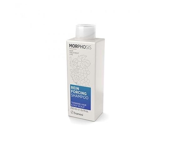 Framesi reinforcing shampoo thinning hair oily scalp 250ml 1