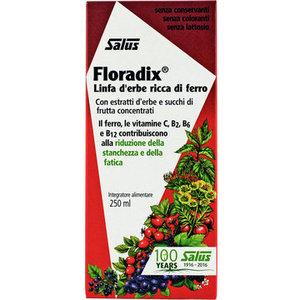 Salus Floradix Linfa D'Erbe Ricca Di Ferro Integratore Alimentare 250ml