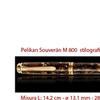 M 800 renaissance brown