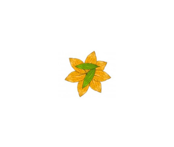 FLAVOUART 7 foglie