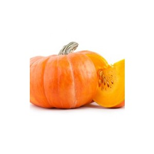 The Perfumer's Apprentice PUMPKIN 15 ml