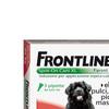 Frontiline combo cane xl big 0167d