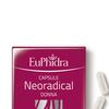 Euphidra neoradical donna 0226