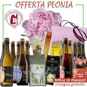 Offerta Peonia con 1 borsa in omaggio