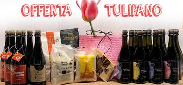 Offerta tulipano2