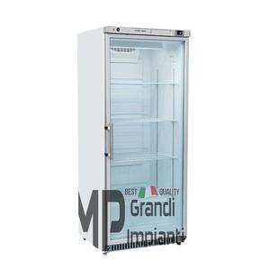 Armadio frigo inox porta in vetro 600 litri Temp +2° +8° C-RCXG600