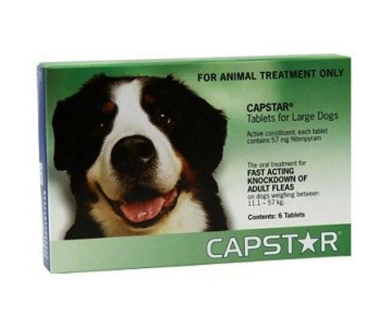 CAPSTAR 1 BLISTER 6 compresse 57mg