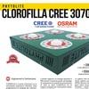 Brochure clorofilla ita hr 1