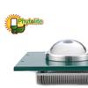 Phytolite cob 30w