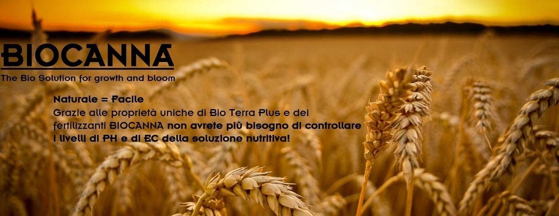 Biocanna bio flores bio vega rhizotonic bioboost