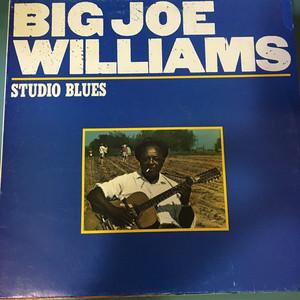 Big Joe Williams – Studio Blues