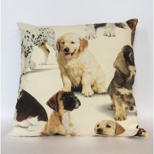 Cuscino cuccioli 40x40