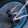 Fat bike 2015 12 135931
