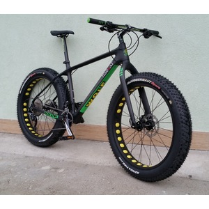 Fat bike 211 carbon