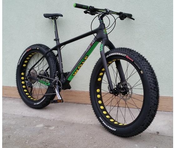 Fat bike 211 carbon