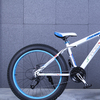 Fat bike 2015 12 135928