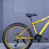 Fat bike 2015 12 135853