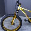 Fat bike 2015 12 135867
