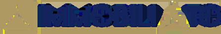 Logo immobilito2