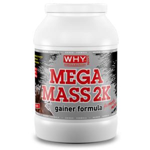 why sport Mega Mass 2K – gainer 2kg polvere vaniglia