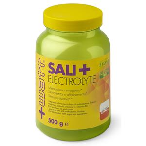 +WATT Sali+ 500 g - Maltodestrine e Sali minerali limone