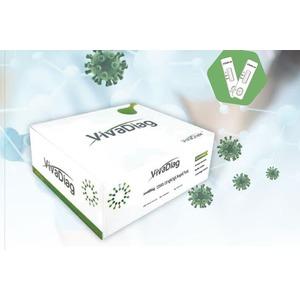 VivaDiag™ COVID-19 lgM/IgG Rapid Test - n°40 kit