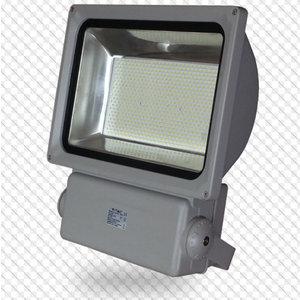 300W Proiettore LED Classico Bianco freddo-5386