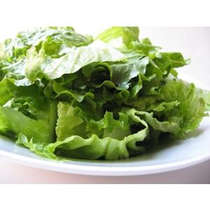 Insalata verde condita con olio evo e sale