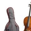 Cello student i 2